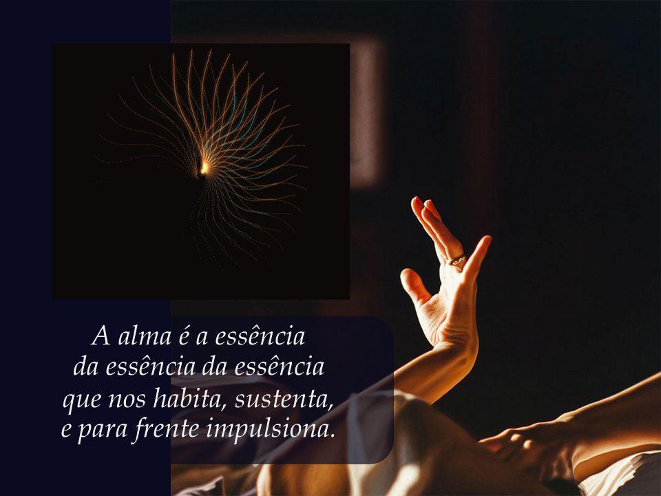 A alma é a essência da essência que nos habita, sustenta, e para frente impulsiona.