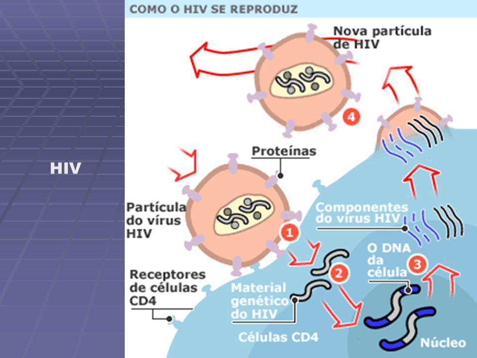 Reação hansênica do tipo I Lesão de hanseníase dimorfavirchowiana em paciente HIV