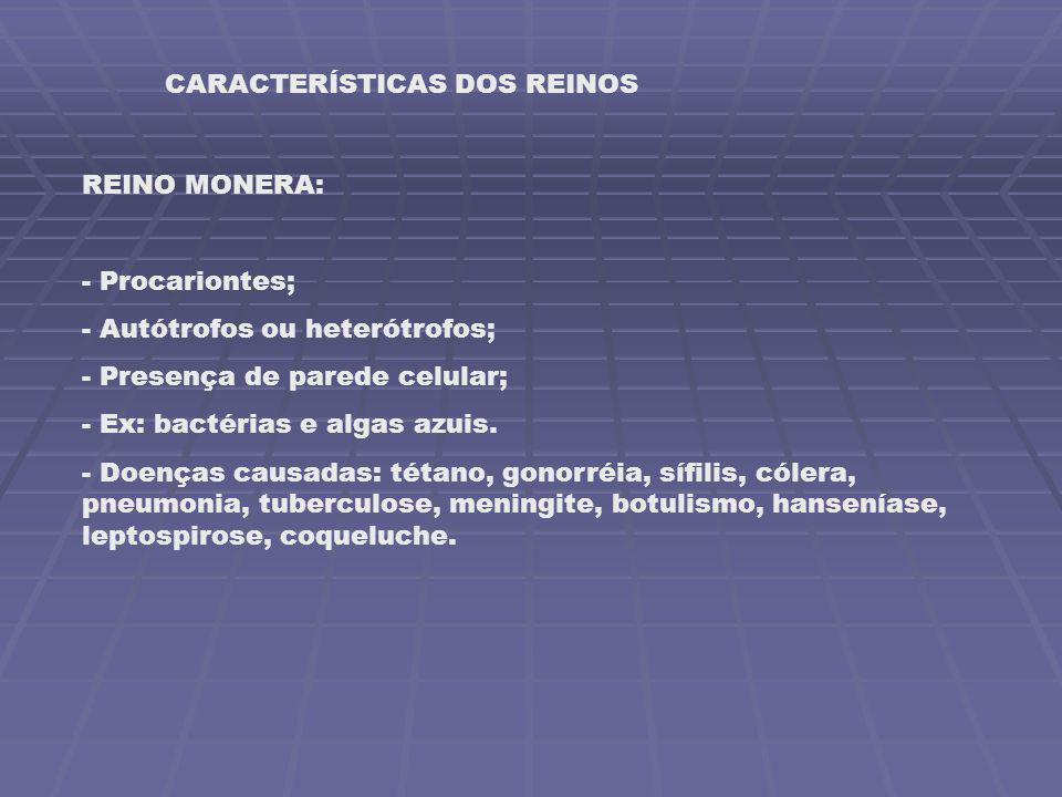 CARACTERÍSTICAS DOS REINOS REINO MONERA: - Procariontes; - Autótrofos ou heterótrofos; - Presença de parede celular; - Ex: bactérias e algas azuis. -