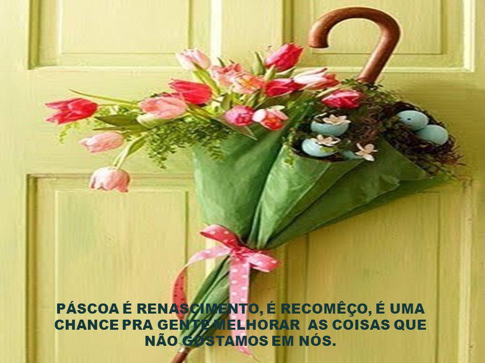 Desejo que nesta Páscoa, a felicidade seja como um coelho. Se reproduza sem parar!!