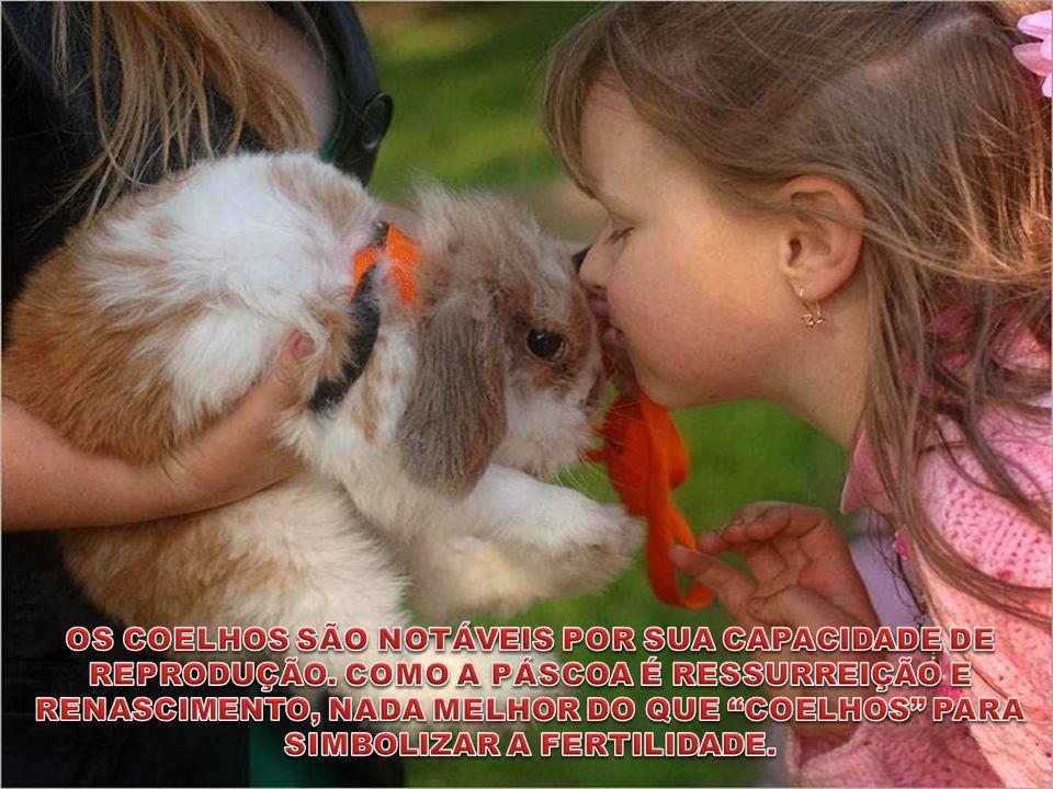 Fundamental é o amor. É impossível ser feliz sozinho!!!