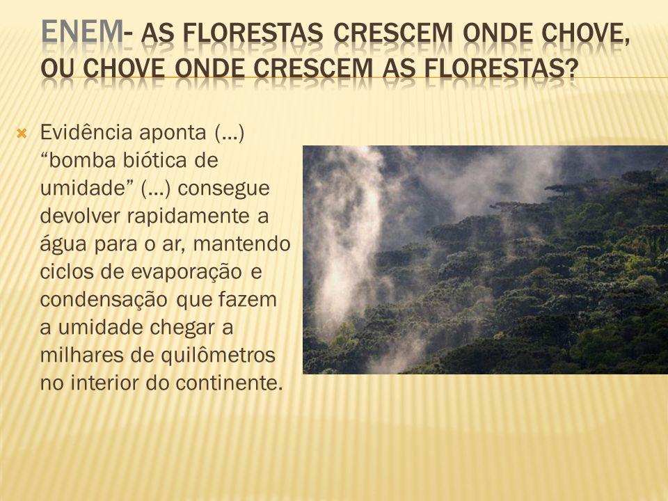 Ombrófila Densa; Grande biodiversidade; Latifoliada; Intensa evapotranspiração Clima= equatorial