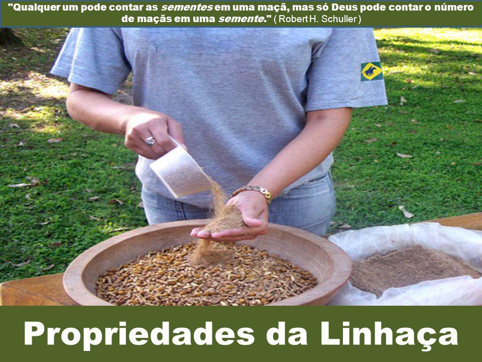 Propriedades da Linhaça Qualquer um pode contar as sementes em uma maçã, mas só Deus pode contar o número de maçãs em uma semente. ( Robert H.