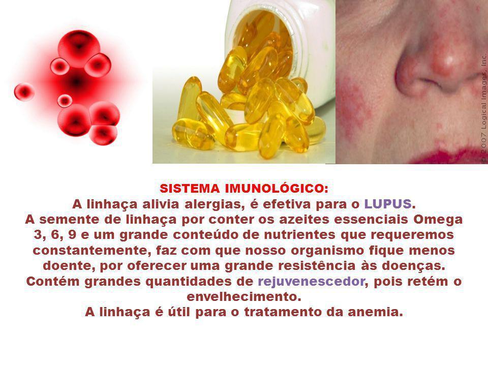 SISTEMA IMUNOLÓGICO: A linhaça alivia alergias, é efetiva para o LUPUS.