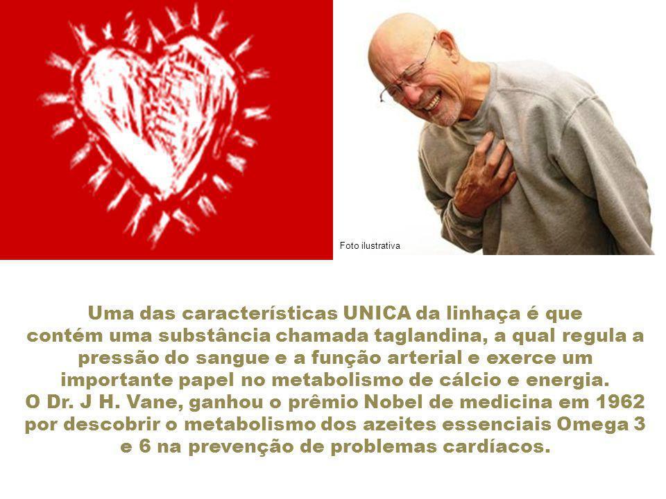 Uma das características UNICA da linhaça é que contém uma substância chamada taglandina, a qual regula a pressão do sangue e a função arterial e exerce um importante papel no metabolismo de cálcio e energia.