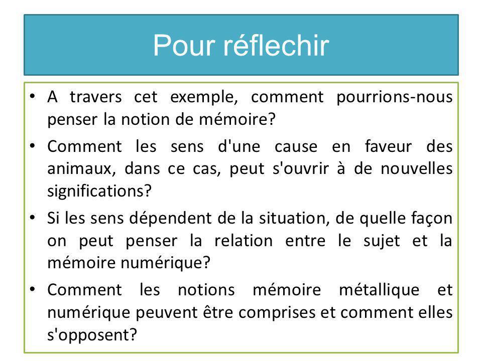 Pour réflechir A travers cet exemple, comment pourrions-nous penser la notion de mémoire.