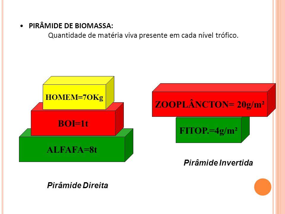 PIRÂMIDE DE BIOMASSA: Quantidade de matéria viva presente em cada nível trófico.
