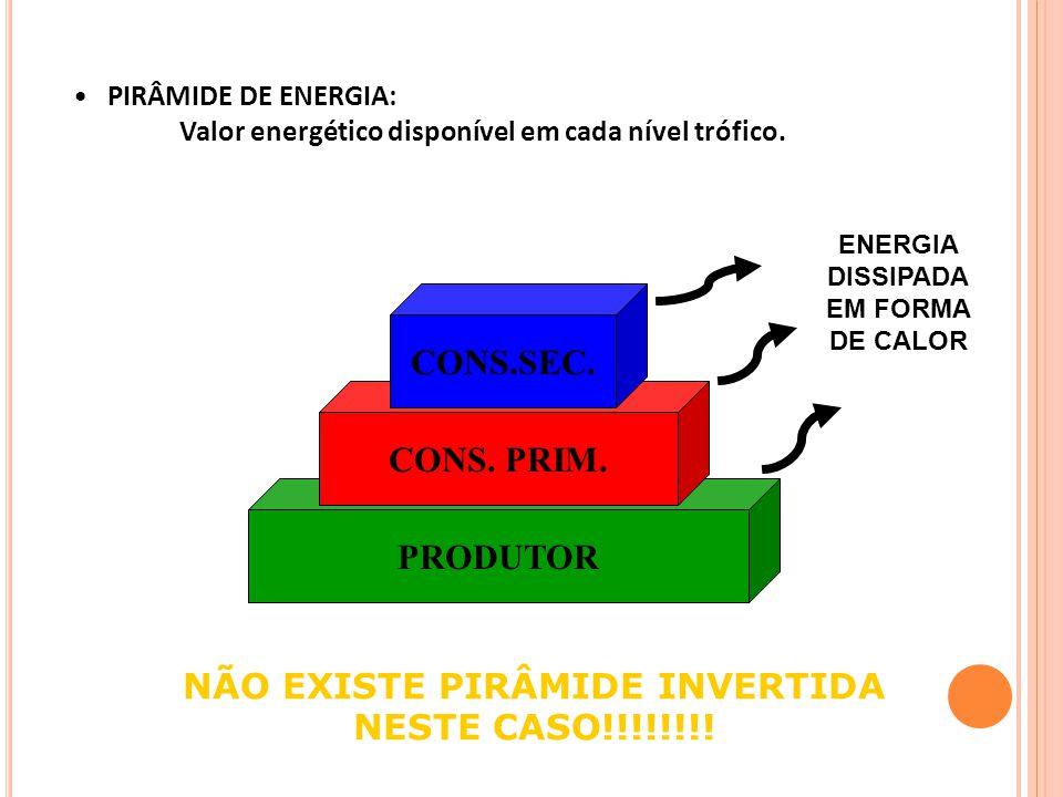 PIRÂMIDE DE ENERGIA: Valor energético disponível em cada nível trófico.