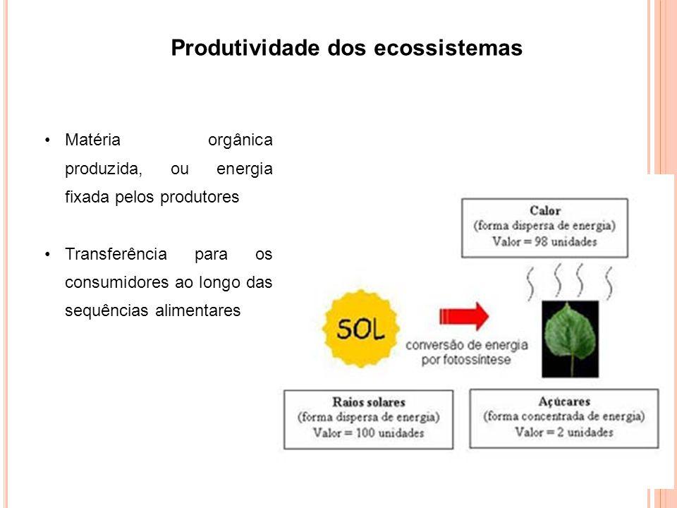 Produtividade dos ecossistemas Matéria orgânica produzida, ou energia fixada pelos produtores Transferência para os consumidores ao longo das sequências alimentares
