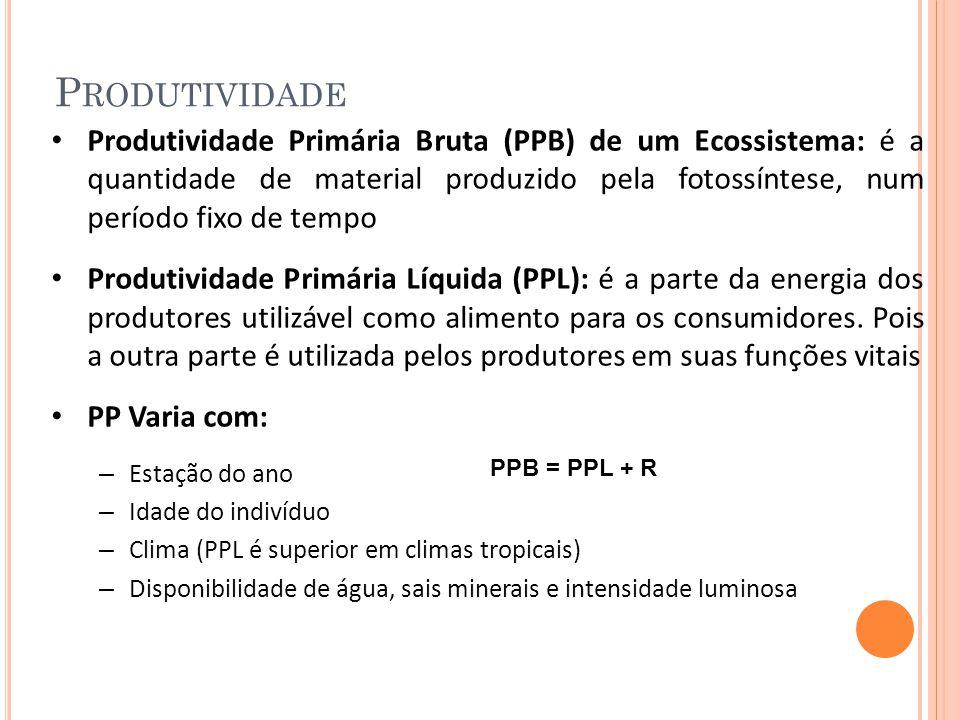 P RODUTIVIDADE Produtividade Primária Bruta (PPB) de um Ecossistema: é a quantidade de material produzido pela fotossíntese, num período fixo de tempo Produtividade Primária Líquida (PPL): é a parte da energia dos produtores utilizável como alimento para os consumidores.