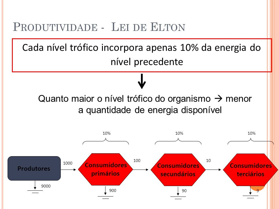 P RODUTIVIDADE - L EI DE E LTON Cada nível trófico incorpora apenas 10% da energia do nível precedente Quanto maior o nível trófico do organismo menor a quantidade de energia disponível Consumidores primários Produtores Consumidores secundários Consumidores terciários 1000 10100 10% 900 909 9000