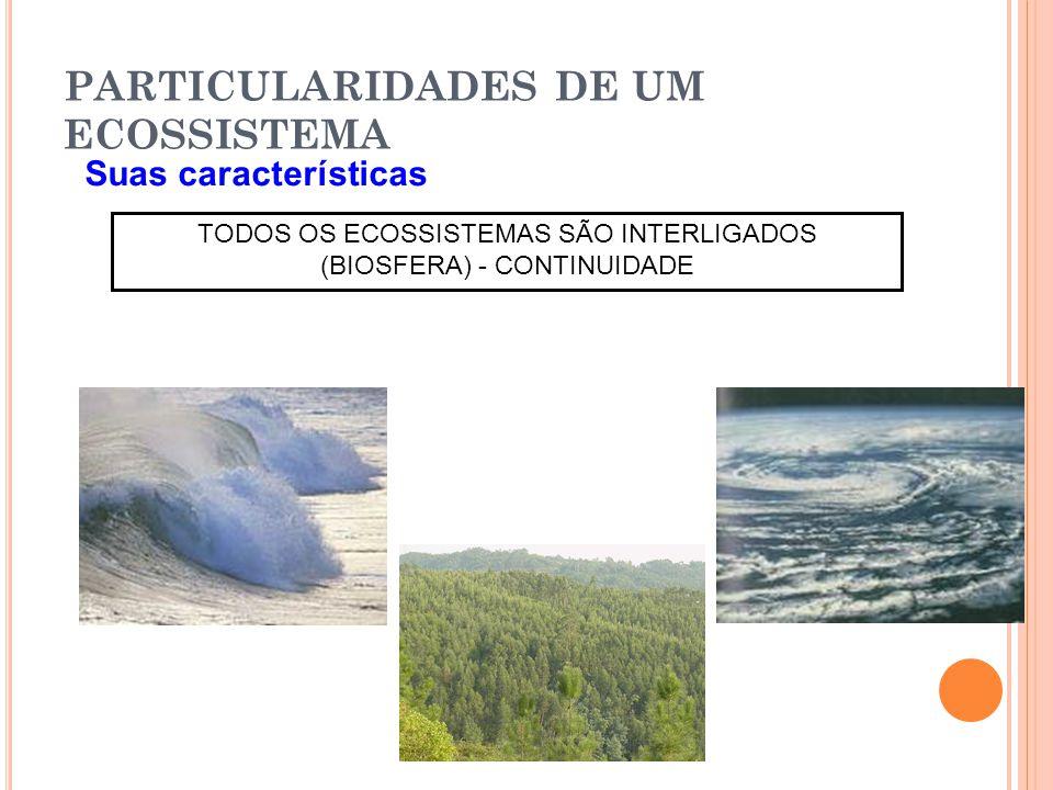 PARTICULARIDADES DE UM ECOSSISTEMA Suas características TODOS OS ECOSSISTEMAS SÃO INTERLIGADOS (BIOSFERA) - CONTINUIDADE