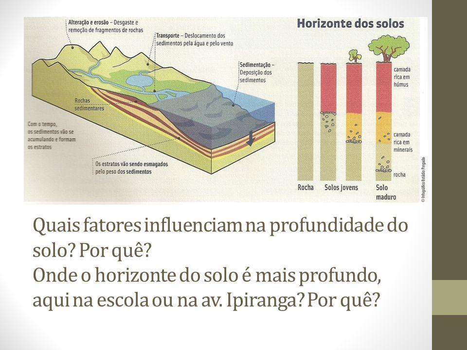 Quais fatores influenciam na profundidade do solo? Por quê? Onde o horizonte do solo é mais profundo, aqui na escola ou na av. Ipiranga? Por quê?