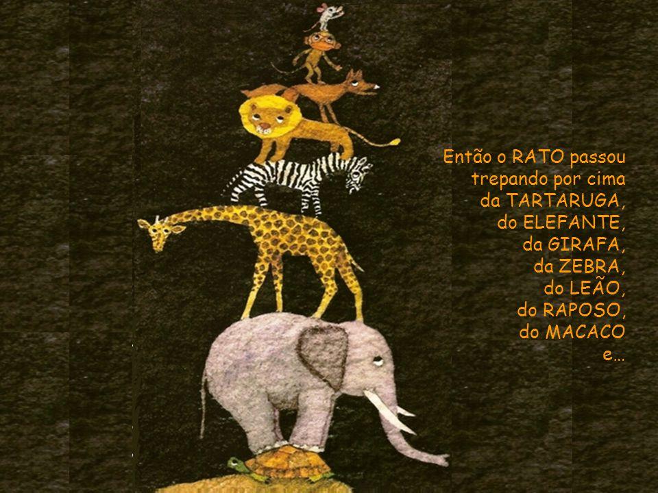 Então o RATO passou trepando por cima da TARTARUGA, do ELEFANTE, da GIRAFA, da ZEBRA, do LEÃO, do RAPOSO, do MACACO e…