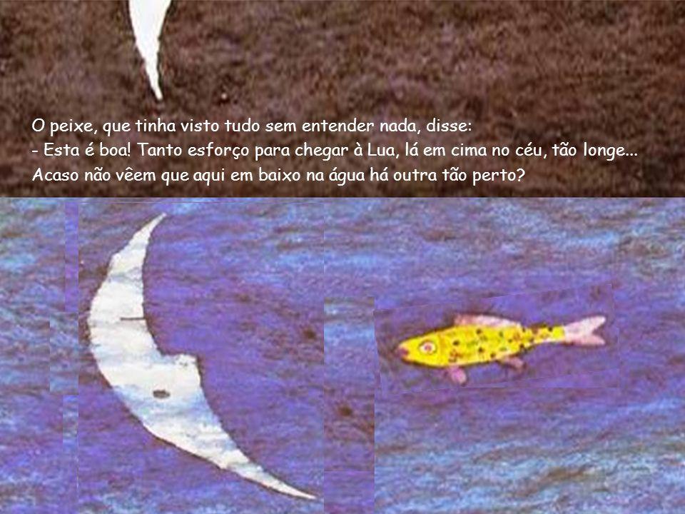 O peixe, que tinha visto tudo sem entender nada, disse: - Esta é boa! Tanto esforço para chegar à Lua, lá em cima no céu, tão longe... Acaso não vêem