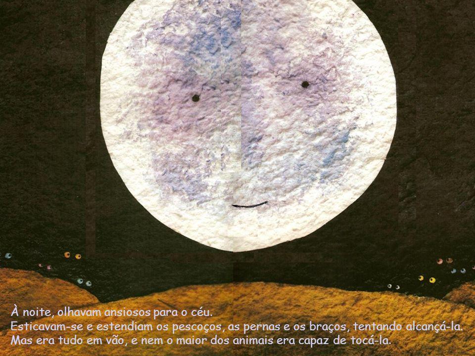 Um belo dia, a pequena TARTARUGA decidiu escalar a montanha mais alta para conseguir chegar à Lua.