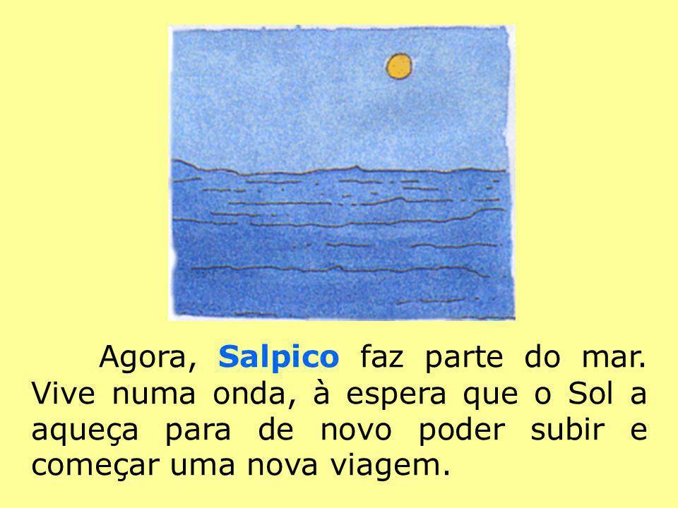 Agora, Salpico faz parte do mar. Vive numa onda, à espera que o Sol a aqueça para de novo poder subir e começar uma nova viagem.