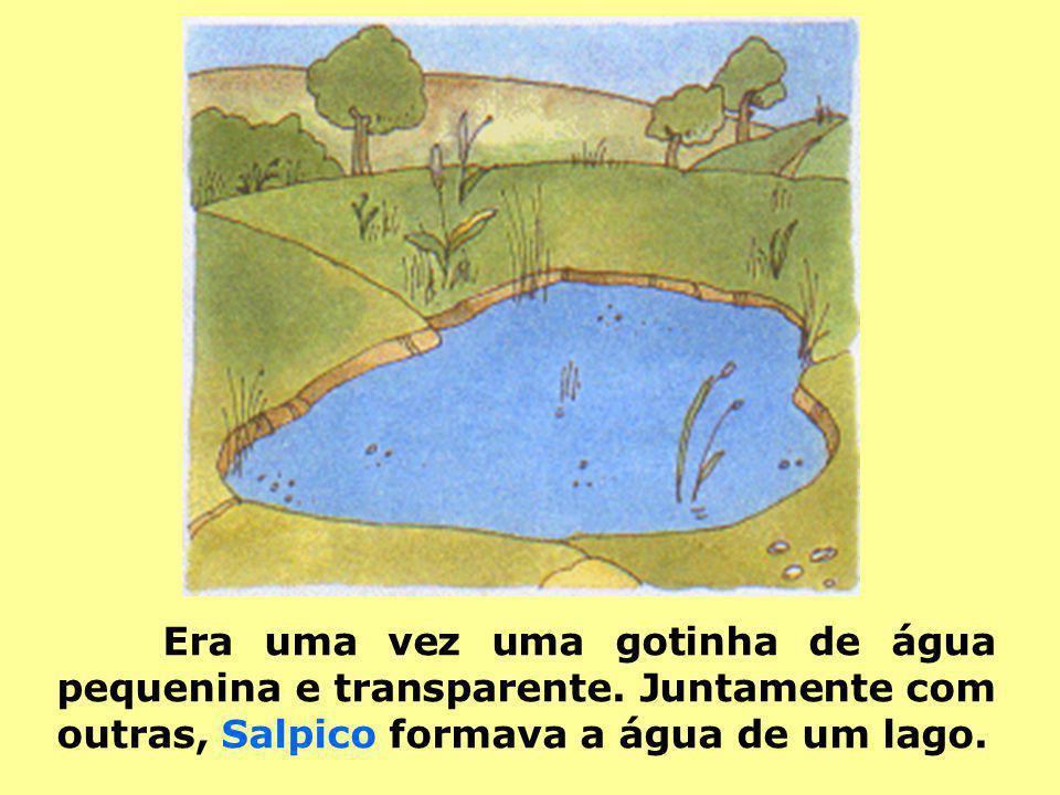 Era uma vez uma gotinha de água pequenina e transparente. Juntamente com outras, Salpico formava a água de um lago.