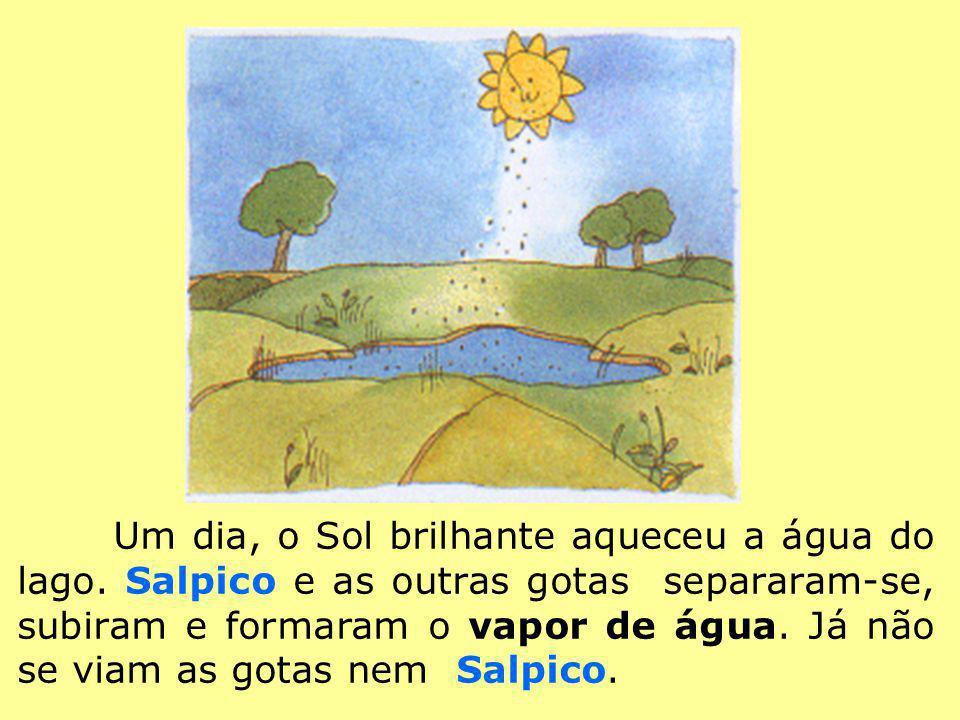 Um dia, o Sol brilhante aqueceu a água do lago. Salpico e as outras gotas separaram-se, subiram e formaram o vapor de água. Já não se viam as gotas ne