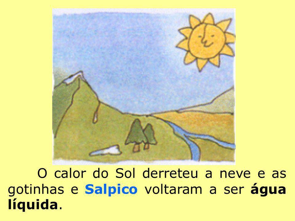 O calor do Sol derreteu a neve e as gotinhas e Salpico voltaram a ser água líquida.