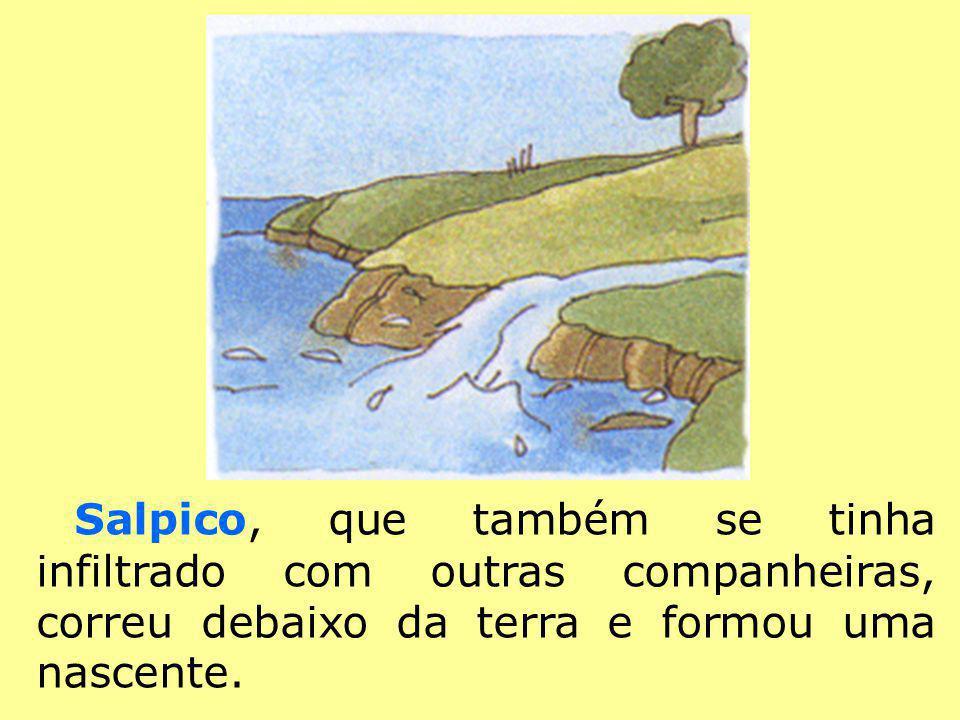 A Gotinha de Água foi ter ao rio onde conheceu os peixes.