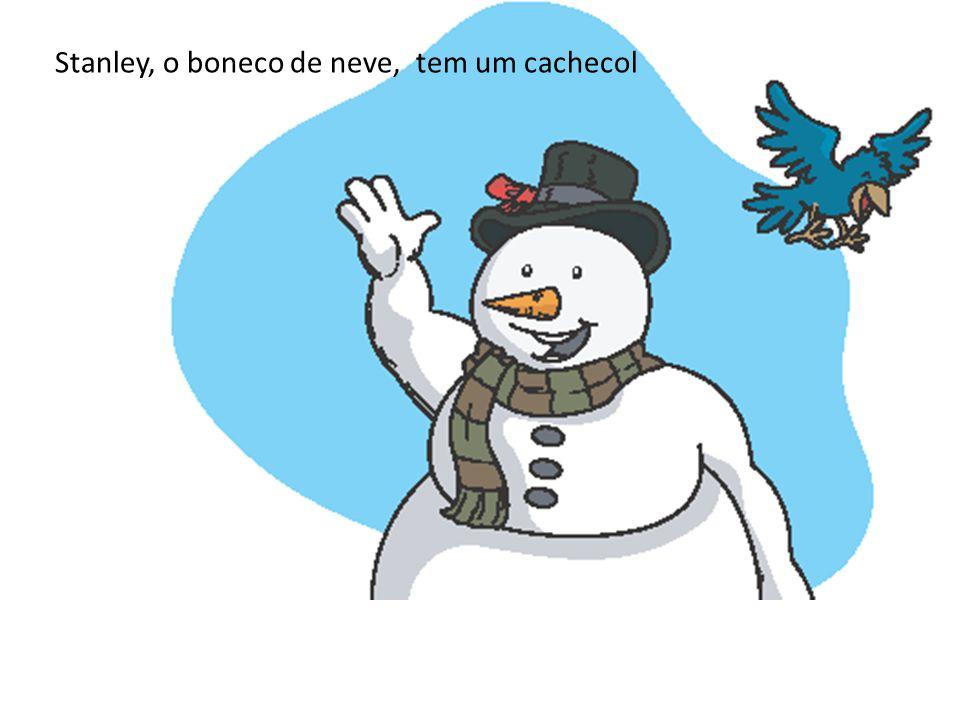 Stanley, o boneco de neve, tem um cachecol