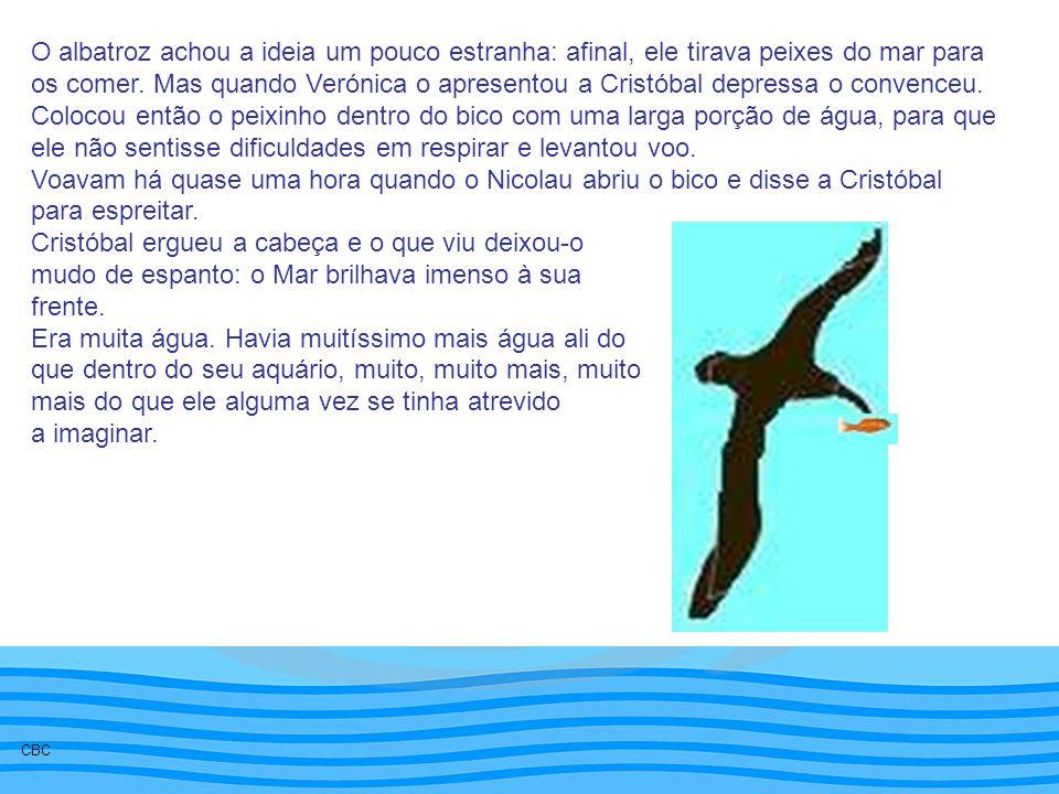 O albatroz achou a ideia um pouco estranha: afinal, ele tirava peixes do mar para os comer. Mas quando Verónica o apresentou a Cristóbal depressa o co