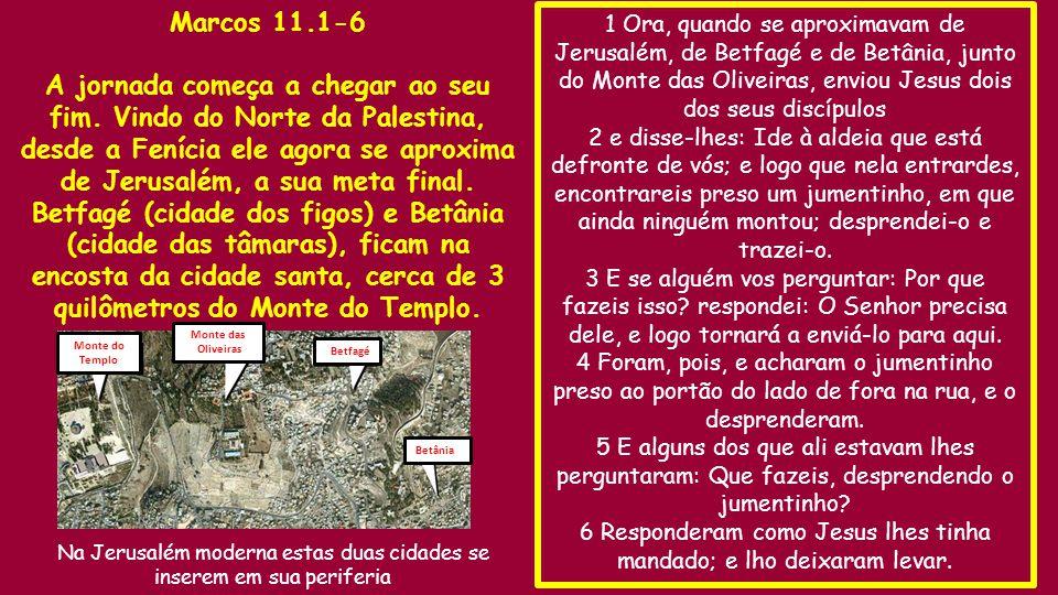 1 Ora, quando se aproximavam de Jerusalém, de Betfagé e de Betânia, junto do Monte das Oliveiras, enviou Jesus dois dos seus discípulos 2 e disse-lhes: Ide à aldeia que está defronte de vós; e logo que nela entrardes, encontrareis preso um jumentinho, em que ainda ninguém montou; desprendei-o e trazei-o.