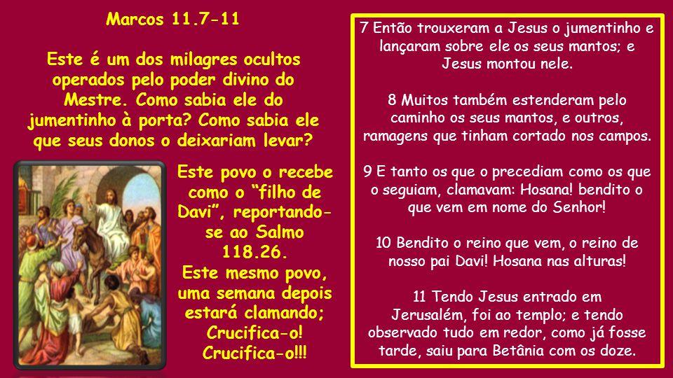 7 Então trouxeram a Jesus o jumentinho e lançaram sobre ele os seus mantos; e Jesus montou nele.