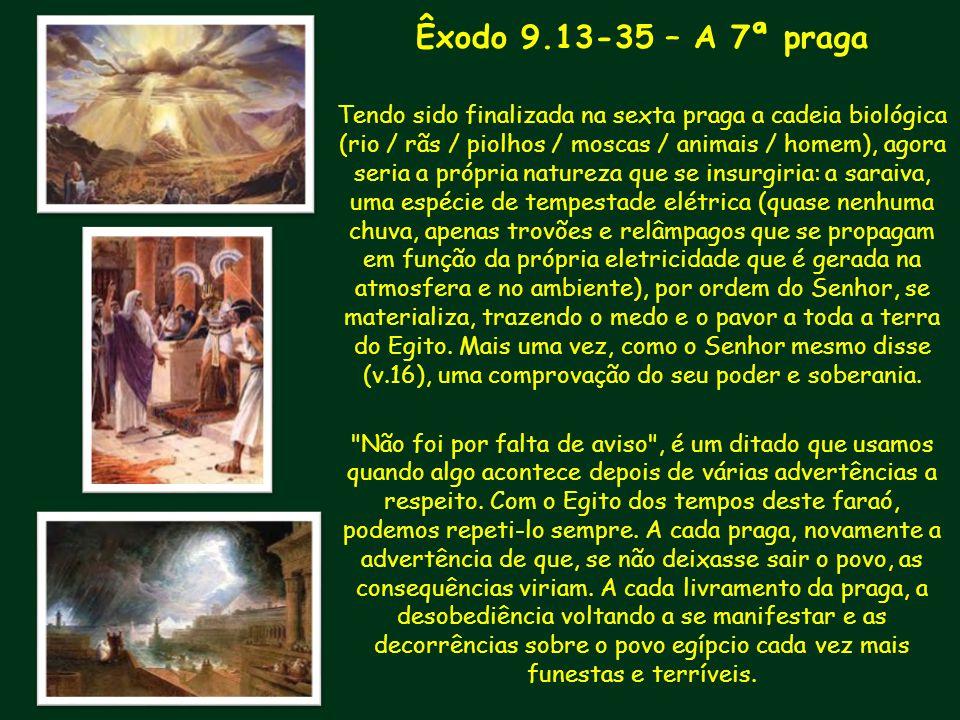 Êxodo 9.13-35 – A 7ª praga Tendo sido finalizada na sexta praga a cadeia biológica (rio / rãs / piolhos / moscas / animais / homem), agora seria a pró
