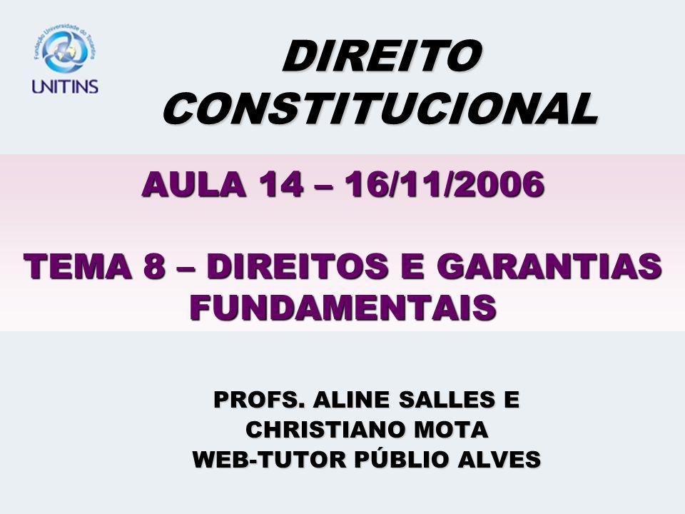 AULA 14 – 16/11/2006 TEMA 8 – DIREITOS E GARANTIAS FUNDAMENTAIS PROFS.