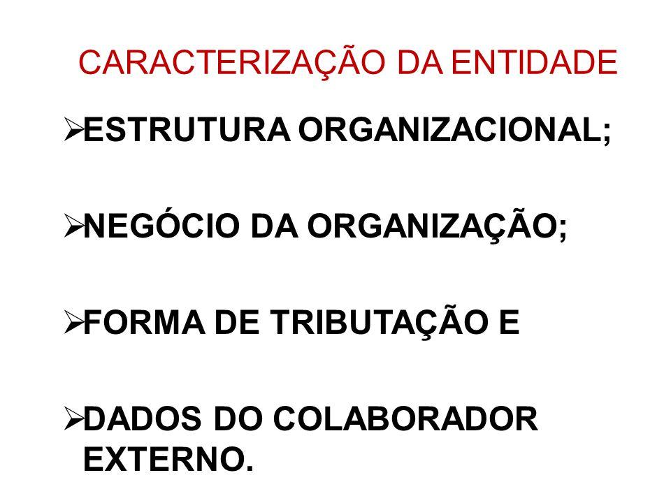 CARACTERIZAÇÃO DA ENTIDADE ESTRUTURA ORGANIZACIONAL; NEGÓCIO DA ORGANIZAÇÃO; FORMA DE TRIBUTAÇÃO E DADOS DO COLABORADOR EXTERNO.