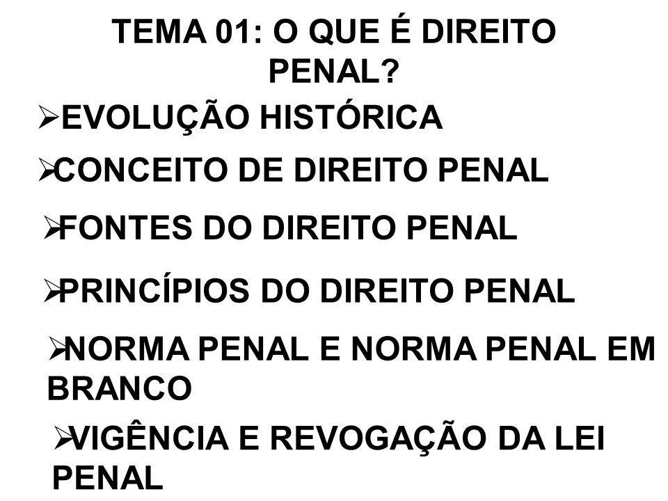 PRINCÍPIO DA INTRANSMISSIBILIDADE DA PENA: NENHUMA PENA PASSARÁ DA PESSOA DO CONDENADO (ART.