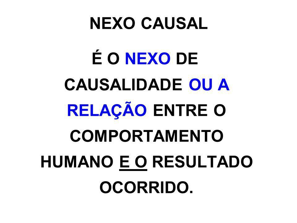 NEXO CAUSAL ART.13.