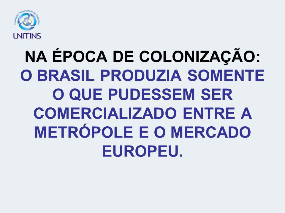 DIREITO NA ÉPOCA DO BRASIL COLONIAL: PARA PORTUGAL O BRASIL DEVIA SERVIR SEUS INTERESSES. A COLONIZAÇÃO FOI IDENTIFICADA COMO EXPLORAÇÃO.