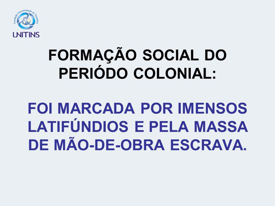 FORMAÇÃO SOCIAL DO PERIÓDO COLONIAL: FOI MARCADA POR IMENSOS LATIFÚNDIOS E PELA MASSA DE MÃO-DE-OBRA ESCRAVA.