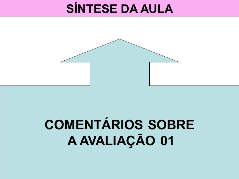 SÍNTESE DA AULA COMENTÁRIOS SOBRE A AVALIAÇÃO 01