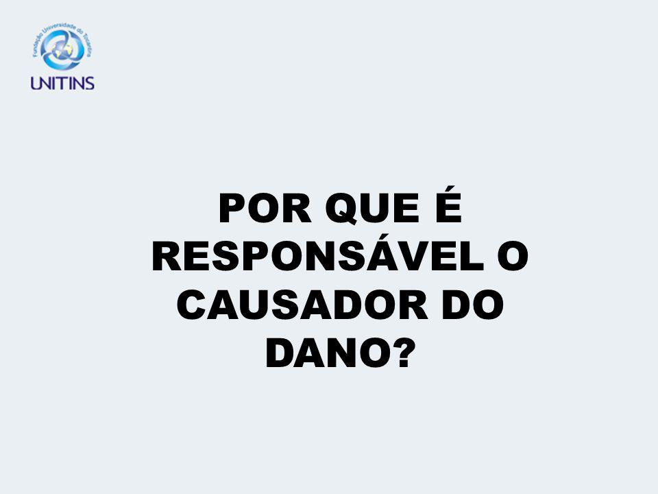 2 – EVENTO DANOSO 3 – NEXO CAUSAL