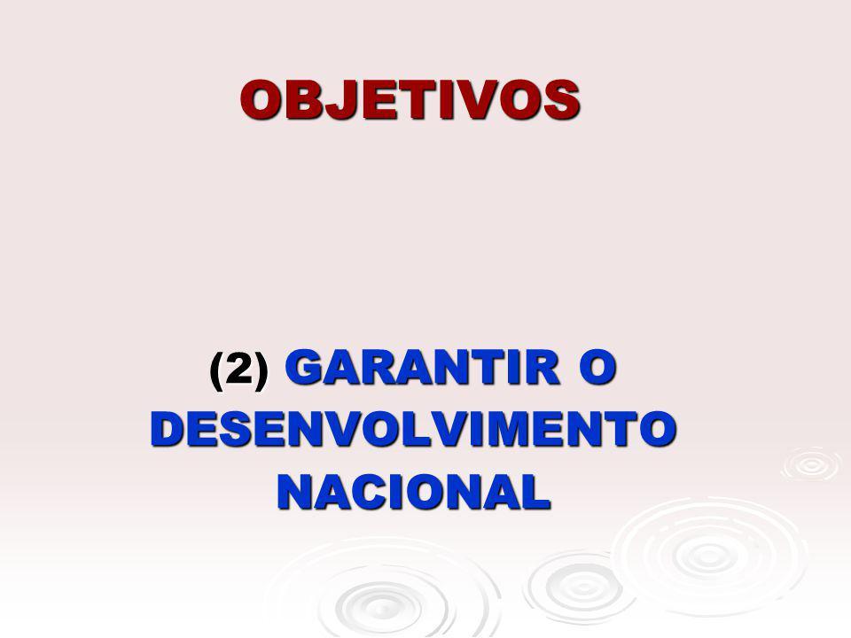 OBJETIVOS (2) GARANTIR O DESENVOLVIMENTO NACIONAL