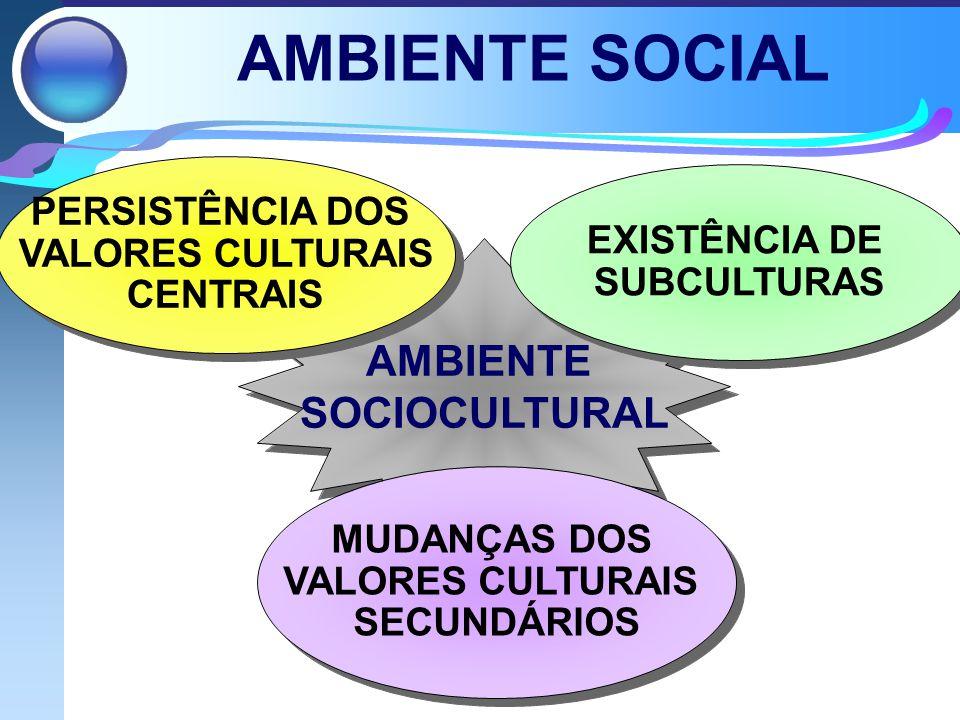 AMBIENTE SOCIAL AMBIENTE SOCIOCULTURAL AMBIENTE SOCIOCULTURAL PERSISTÊNCIA DOS VALORES CULTURAIS CENTRAIS EXISTÊNCIA DE SUBCULTURAS MUDANÇAS DOS VALORES CULTURAIS SECUNDÁRIOS