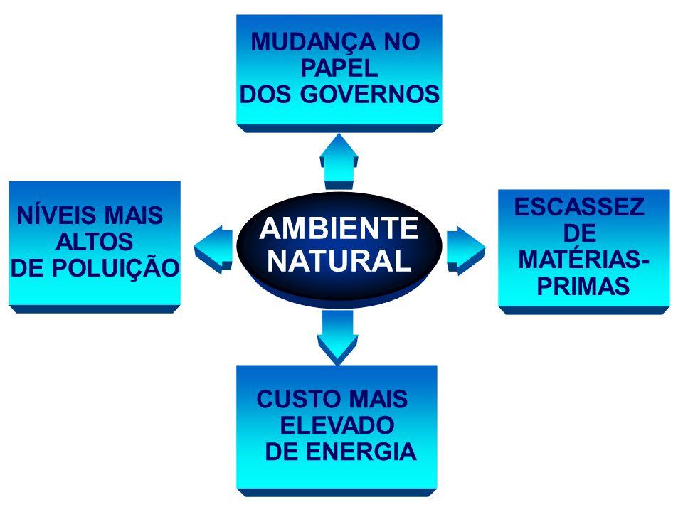 AMBIENTE NATURAL NÍVEIS MAIS ALTOS DE POLUIÇÃO CUSTO MAIS ELEVADO DE ENERGIA ESCASSEZ DE MATÉRIAS- PRIMAS MUDANÇA NO PAPEL DOS GOVERNOS