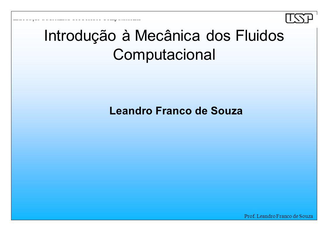 Introdução à Mecânica dos Fluidos Computacional Prof. Leandro Franco de Souza Leandro Franco de Souza Introdução à Mecânica dos Fluidos Computacional