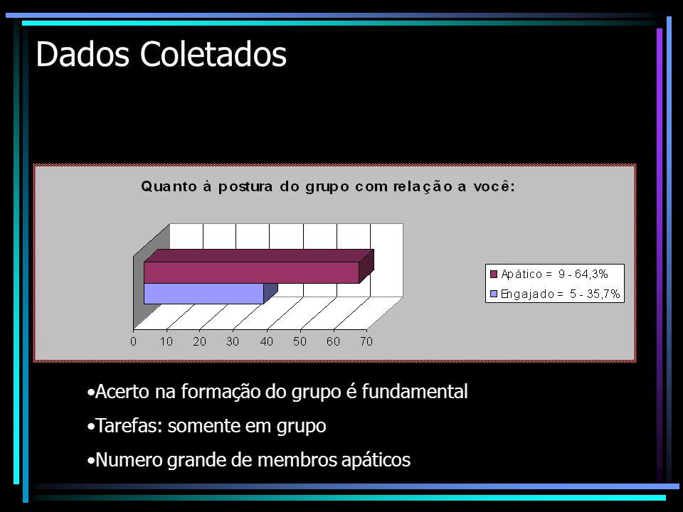 Dados Coletados Acerto na formação do grupo é fundamental Tarefas: somente em grupo Numero grande de membros apáticos