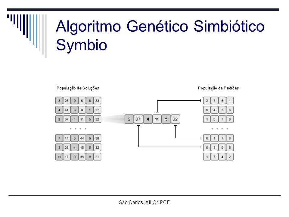 São Carlos, XII ONPCE Algoritmo Genético Simbiótico Symbio