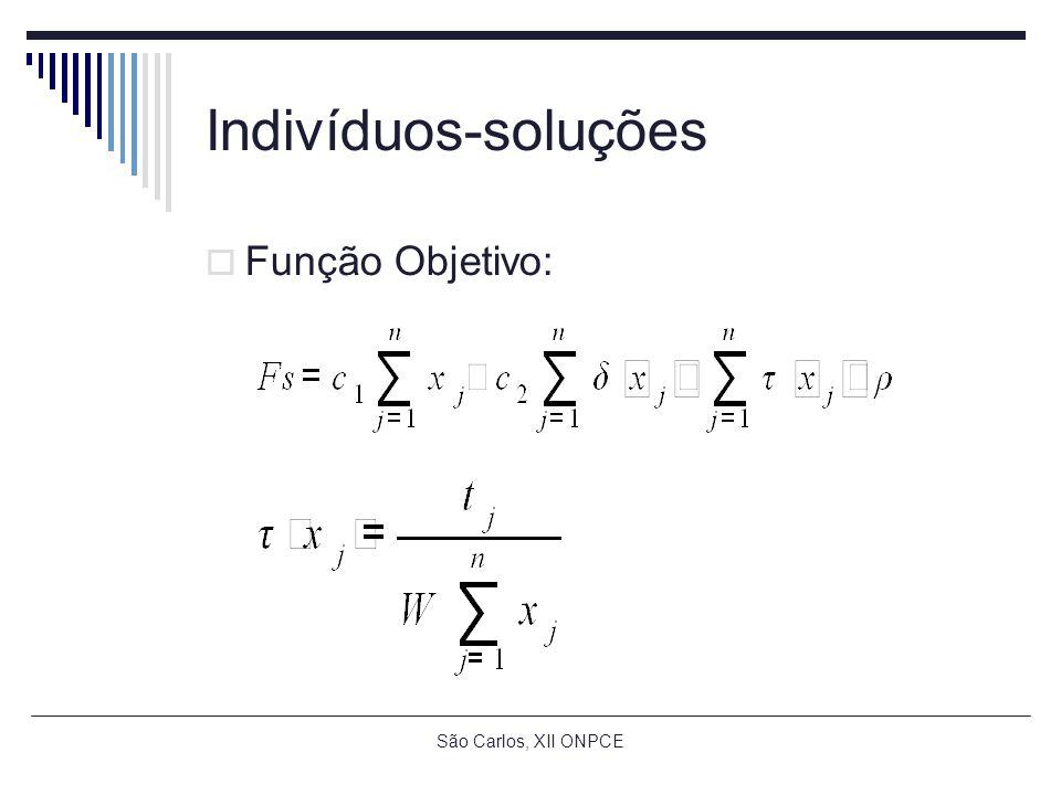 São Carlos, XII ONPCE Indivíduos-soluções Função Objetivo: