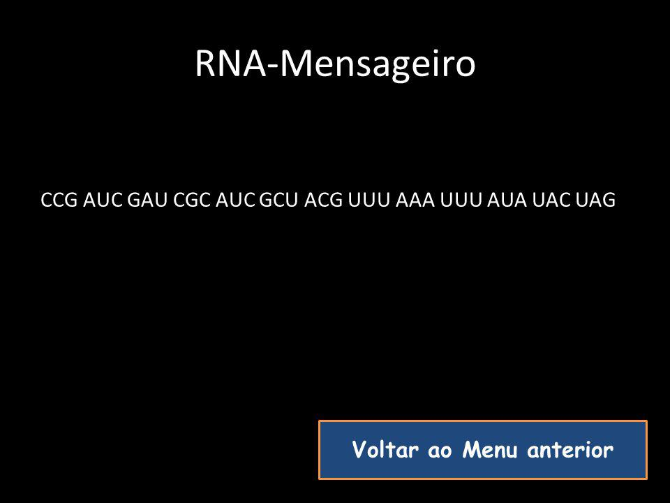 RNA-Mensageiro CCG AUC GAU CGC AUC GCU ACG UUU AAA UUU AUA UAC UAG Voltar ao Menu anterior