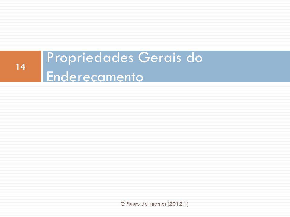 Propriedades Gerais do Endereçamento 14 O Futuro da Internet (2012.1)