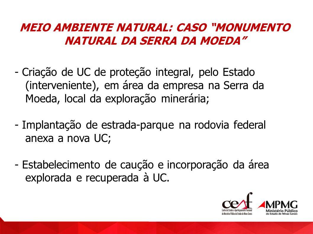 MEIO AMBIENTE NATURAL: CASO MONUMENTO NATURAL DA SERRA DA MOEDA - Criação de UC de proteção integral, pelo Estado (interveniente), em área da empresa