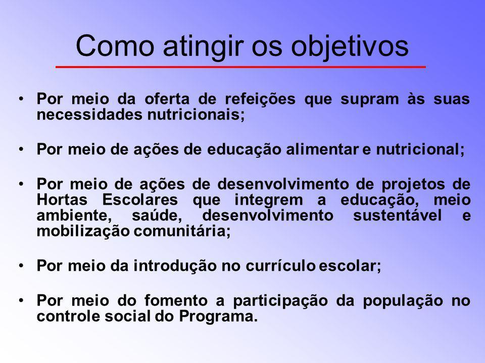 Como atingir os objetivos Por meio da oferta de refeições que supram às suas necessidades nutricionais; Por meio de ações de educação alimentar e nutr
