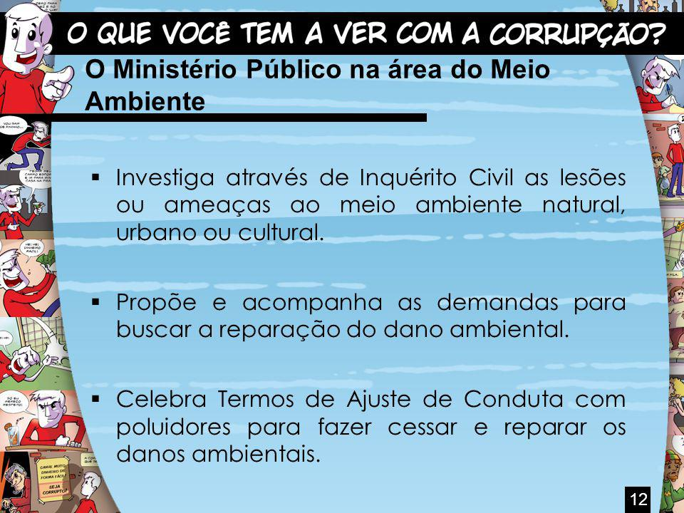 O Ministério Público na área do Meio Ambiente Investiga através de Inquérito Civil as lesões ou ameaças ao meio ambiente natural, urbano ou cultural.
